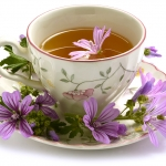 Linha da Frente: Fragrâncias de Chá, Parte II de II (2016)