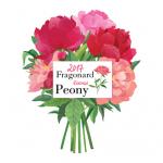 A Flor do Ano de Fragonard 2017: Pivoine (Peônia)