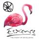ESXENCE 2017: Os MELHORES Perfumes!